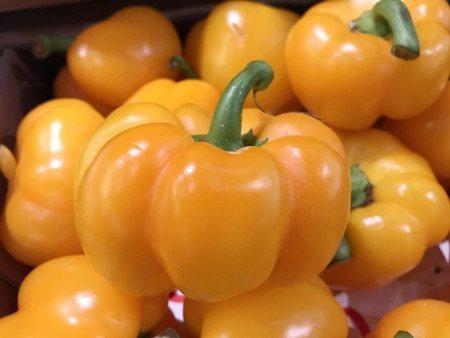 bell pepper (1).jpg