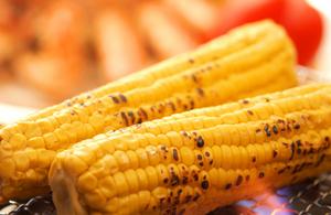 トウモロコシの育て方|2列以上の栽培で確実に受粉!