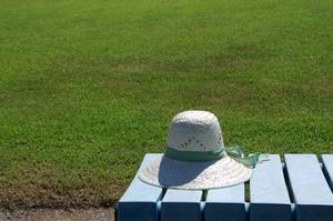 OOSUMI|お手入れの手間が楽な芝生TM9(ティーエムナイン)
